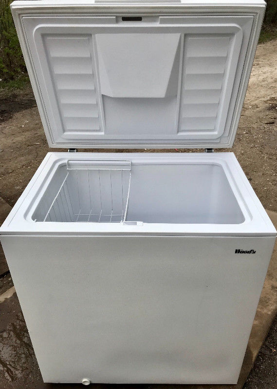 WinnipegFreePress Marketplace | Apartment Size Freezer